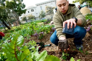 DJ @Nerstylist Planting Chard at Hayes Valley Farm, February 2012